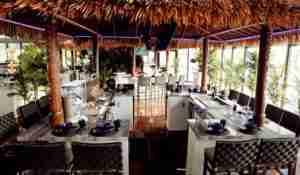 Tiki Hut Paradise Grills